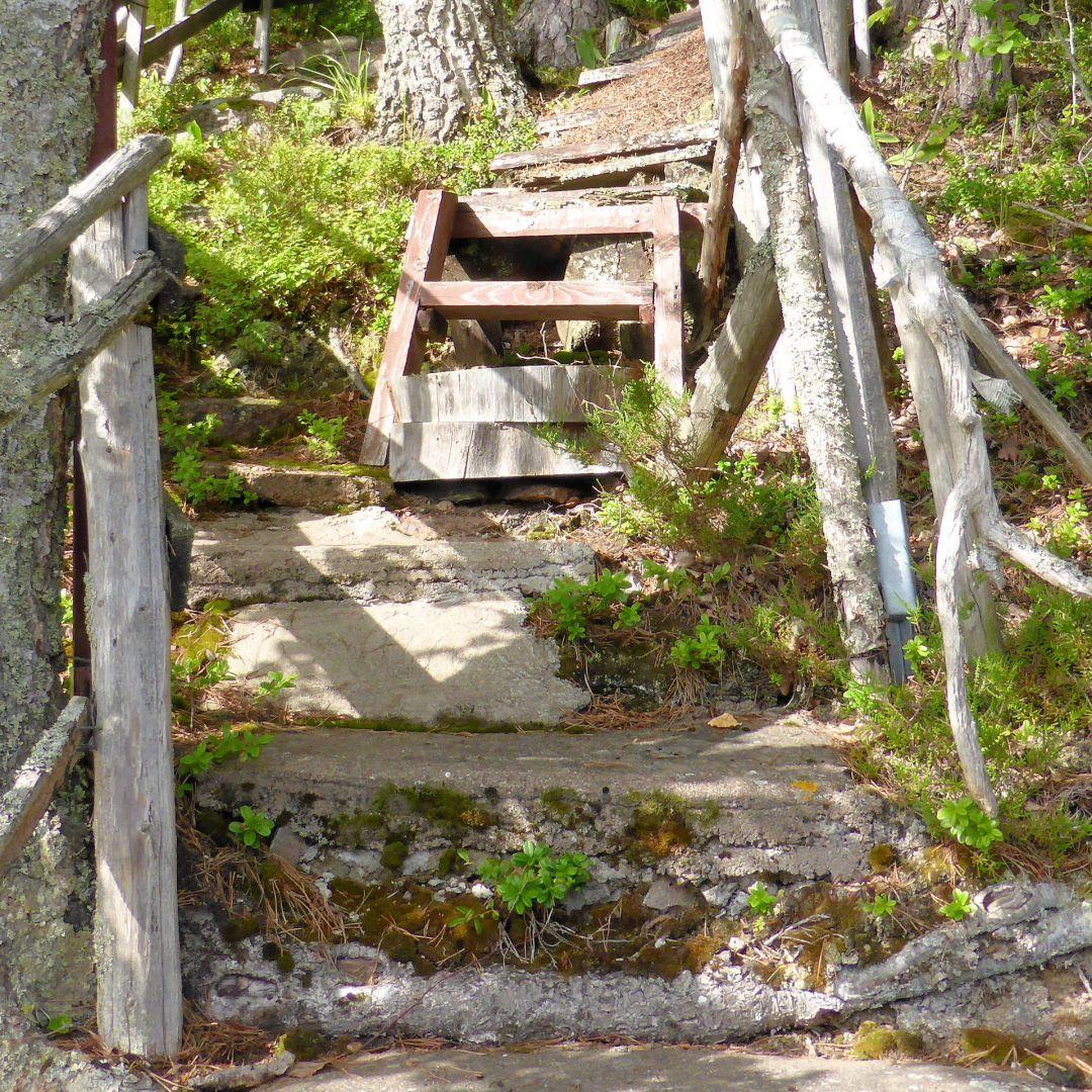 Porras jota vaikea tunnistaa portaaksi. Betonia, puuta ja muurahaispesä. Vielä käytössä !